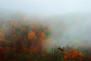 foggy mountain2